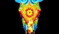 Multi Color     Acrylic on Skull