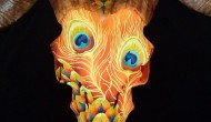 Corsican  |  Acrylic on Skull